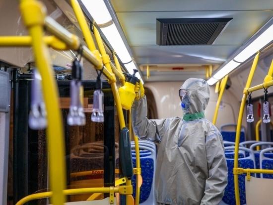 Коронавирус в Приангарье: вируса нет, паника есть, но пока умеренная