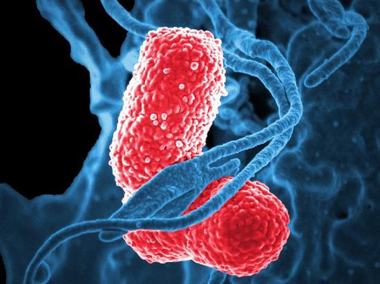 В Калужской области подтвердился второй случай коронавируса
