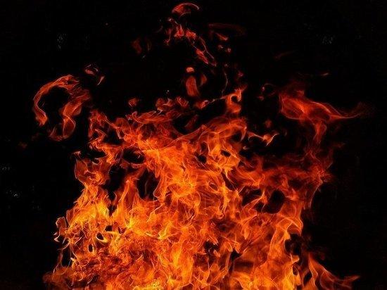 11 раз горела сухая трава в Пскове