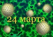 Коронавирус в Германии: более 31.000 инфицированных, 134 умерли от COVID-19