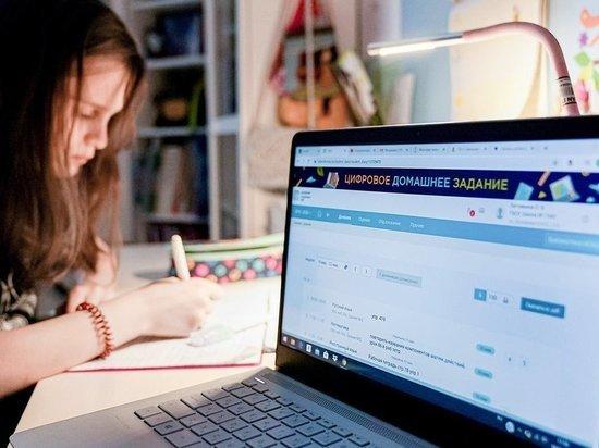 В Ленобласти рассказали, каким будет дистанционное обучение школьников