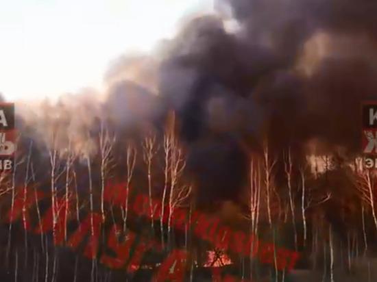 Мощный пожар разбушевался в Грабцево Калуги