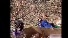 Дети под Тулой во время дистанционного обучения валяются в помойке