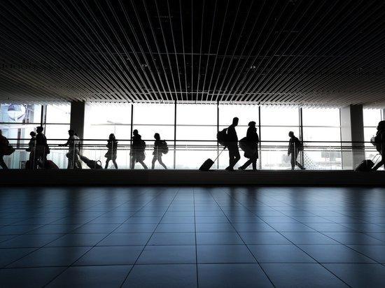Житель Колымы опоздал на рейс и устроил дебош в аэропорту Владивостока