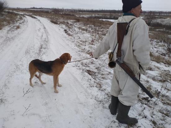 «Думать, как браконьер»: как в Тульской области борются с незаконной охотой