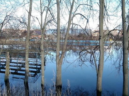 Реконструкция стадиона «Динамо» в Йошкар-Оле может начаться раньше