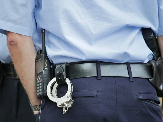 Кражу самовара, аккумулятора и культиватора раскрыли псковские полицейские