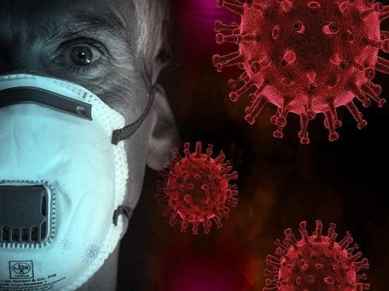 В Воронеже озвучили статистику по коронавирусу