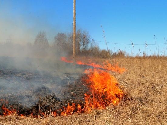 74 раза смоленские пожарные тушили траву за последние сутки