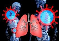В Карелии из-за угрозы коронавируса вводятся новые ограничения