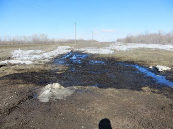 В Новосергиевском районе земля испорчена нефтью
