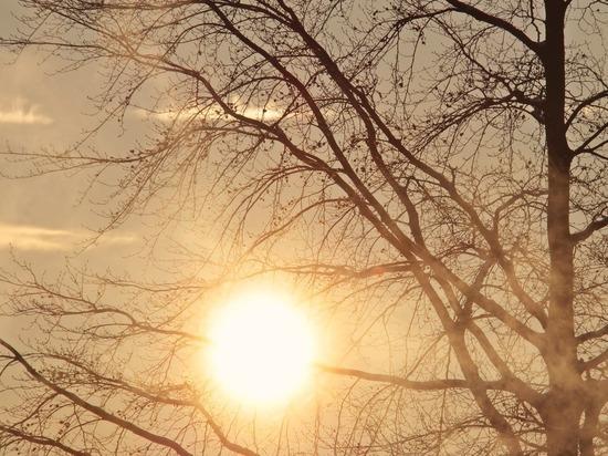 Завтра в Липецке до +13 градусов тепла