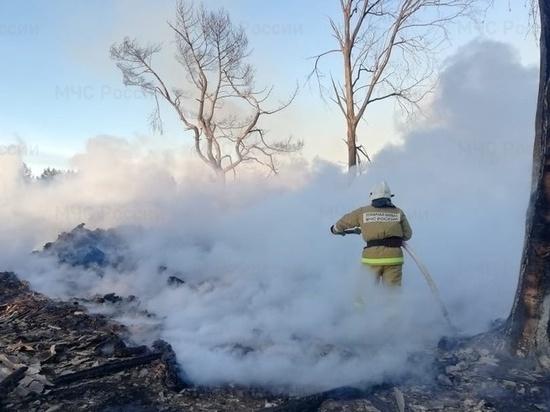 Объятую огнем деревню в Тверской области тушили с земли и с воздуха