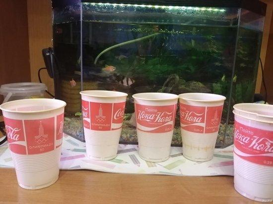 Красноярка продает «олимпийские» стаканчики Coca-Cola за миллион
