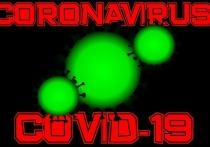Эксперты ожидают 70.000 инфицированных коронавирусом в Германии в ближайшие дни