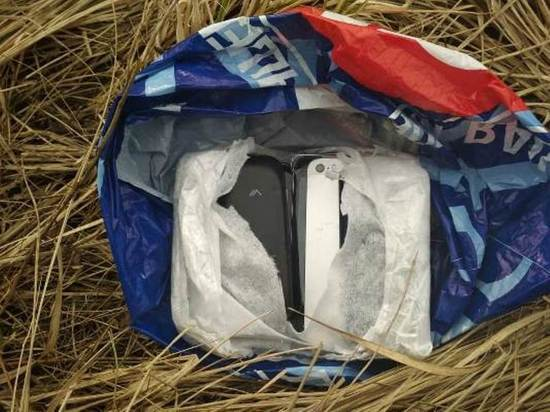 В Ивановской области овчарка оставила заключенных без мобильных телефонов