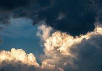 Сильный ветер ожидается в Алтайском крае 27 марта