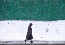 Возвращение зимы в Москву предсказали синоптики