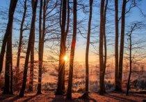 В Саратовской области обещают потепление до +18 градусов