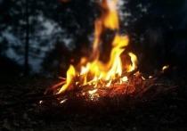 В Псковской области ввели противопожарный режим