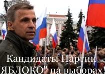 Глава ярославского «Яблока» пойдет в Думу