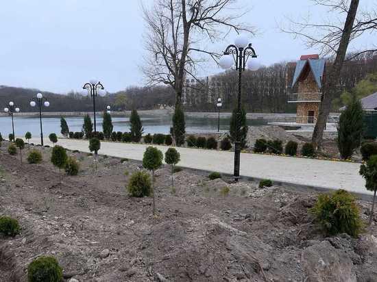 Тюльпановые деревья и гибискус украсят Каскадную лестницу Железноводска