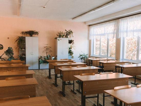 Родители учеников столкнулись с трудностями дистанционного обучения в Кузбассе