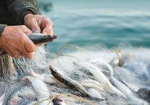 Браконьеры не обращают внимания на указ о самоизоляции: в Ивановской области задержано несколько людей, занимающихся незаконным выловом рыбы