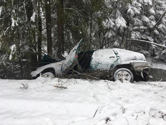 В Тверской области автомобиль съехал с дороги и врезался в дерево