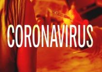 Почти 64.000 инфицированных коронавирусом в Германии