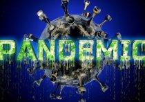 Пандемия коронавируса: Мигрантам и беженцам разрешат работать в Германии