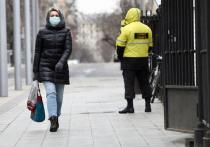 В мэрии ответили на главные вопросы о самоизоляции в Москве
