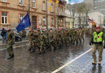 Руководство Литвы считает, что «российская угроза» гораздо страшнее коронавируса