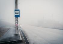 График движения автобусов в Брянске на ближайшие дни изменится