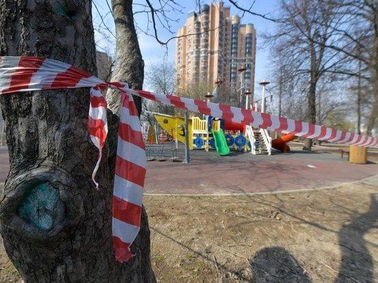 Ракова: режим самоизоляции в Москве ввели из-за массового игнорирования рекомендаций