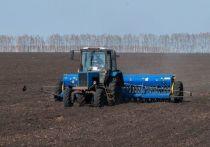 Высокие темпы работы показывают аграрии Мордовского, Петровского и Токарёвского районов