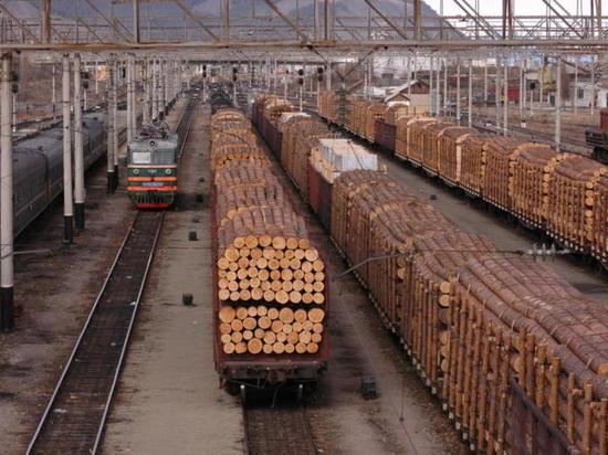 В Приангарье обнаружили контрабанду леса на 50 млн