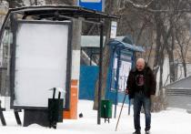 Ученые разъяснили, как снег влияет на коронавирус