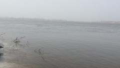 В Астраханской области дельта Волги окутана масляными пятнами