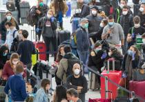 Застрявшие в аэропорту Нью-Йорка россияне обратились к Путину