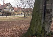 Мгновения весны: воспоминания солдата Вермахта