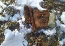 Под Тулой поисковики обнаружили останки двух неизвестных солдат