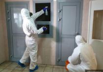 700 тысяч рублей выделят из резервного фонда Пскова на борьбу с коронавирусом