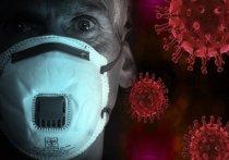 В Петрозаводске выявили заболевшего коронавирусом, не выезжавшего за пределы Карелии
