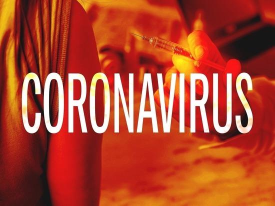 Пандемия коронавируса: в Германии выявлено 77 558 инфицированных