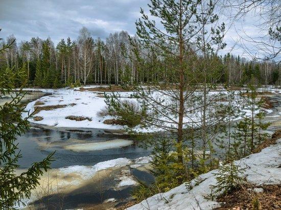 В Челябинской области ожидаются мокрый снег и сильный ветер