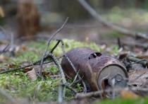 Великолукская прокуратура заставила арендатора убрать свалку в лесу
