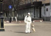 Тверитянин в защитном костюме предлагает жителям помощь в выгуле собак