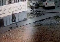 В Смоленске задержали педофила, напавшего на 10-летнюю девочку в Уфе