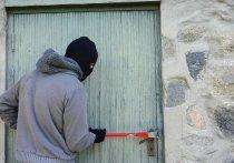 В Орле поймали дачных грабителей